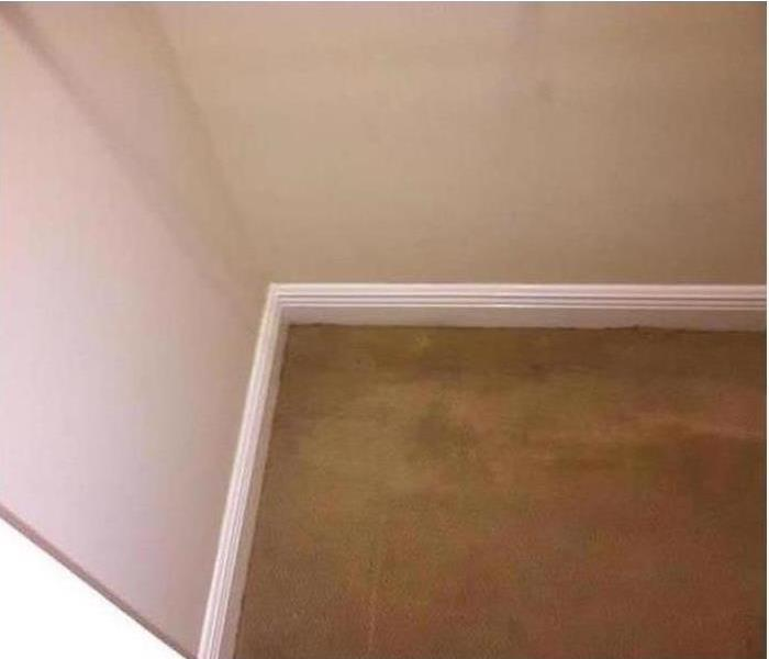 Mold Damage – Chattanooga House After