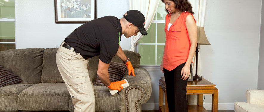 Chattanooga, TN carpet upholstery cleaning